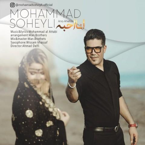 دانلود آهنگ محمد سهیلى انا احبه